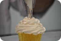 Curso - Festival de Cupcakes 03 0022