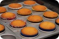 Curso - Festival de Cupcakes 1007