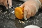 Arraial de Cupcakes 2 - 038