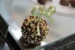 Harald - Cuso Chocolate 036