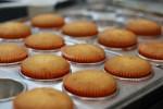 Cupcakes - Doces e Salgados - 026