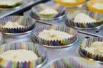 Cupcake Kids - 021