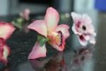 Confeitaria Fina - Flores 01B - 014