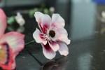 Confeitaria Fina - Flores 01B - 015