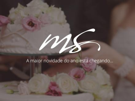 MS_BloG_2